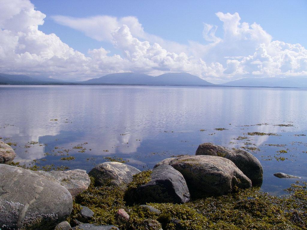 Белое море фото 8 фотография